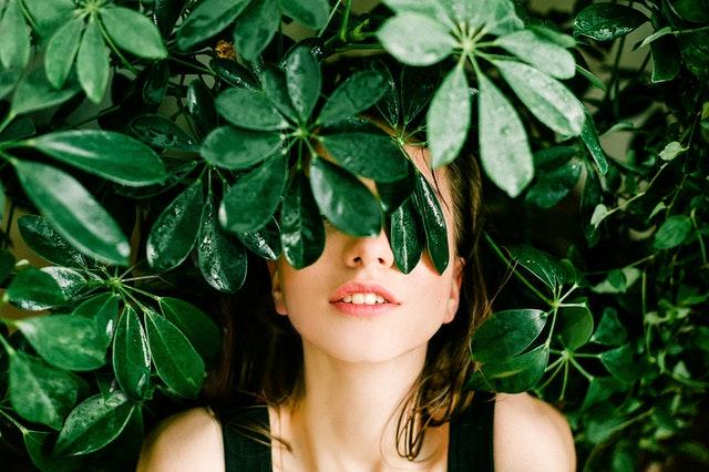 Jakie rośliny sprawdzą się w ogrodzie wertykalnym?